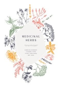 손으로 그린 된 약초 프레임. 꽃, 잡초 및 초원 스케치. 여름 식물 추상 템플릿입니다. 새겨진 스타일의 꽃 요소와 식물 배경. 허브 개요