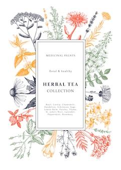 手描きの薬効があるハーブフレームの色。花、雑草、牧草地のスケッチ。お茶、化粧品、薬または包装のヴィンテージのテンプレートです。花の要素を持つ植物の背景