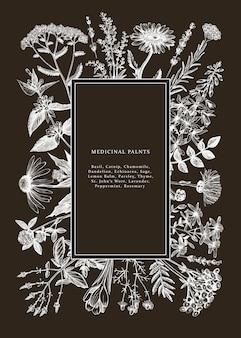 칠판에 손으로 그린 약초 프레임입니다. 꽃, 잡초 및 초원 스케치. 빈티지 여름 식물 템플릿입니다. 새겨진 스타일의 꽃 요소와 식물 배경.