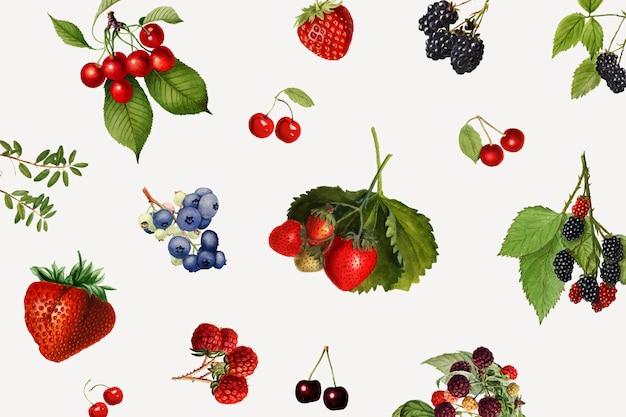 Frutti di bosco misti disegnati a mano