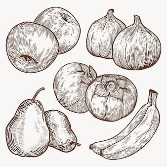 Коллекция рисованной монохромных фруктов