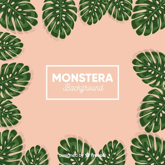 Hand drawn monstera frame background