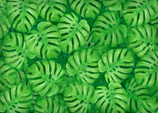手描きのモンステラの葉の背景