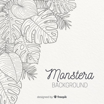 Hand drawn monstera leaves background