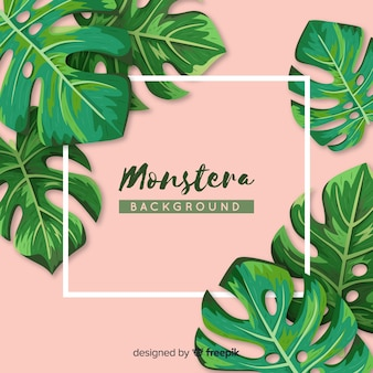 Hand drawn monstera leaves frame background