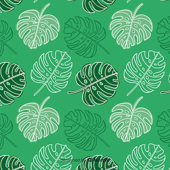 Hand drawn monstera leaves pattern
