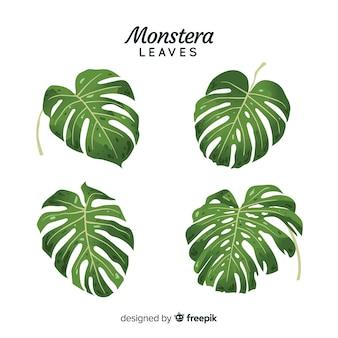 Рисованной листья монстера
