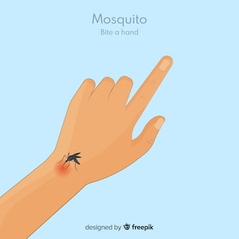 Hand drawn mosquito biting a hand
