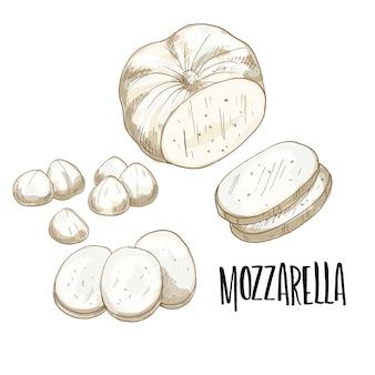 Рисованной иллюстрации сыр моцарелла