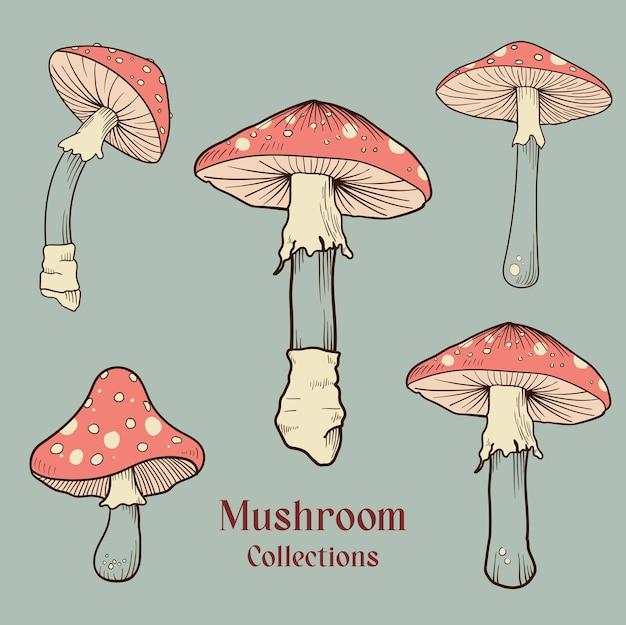 Ручной обращается гриб узор фона