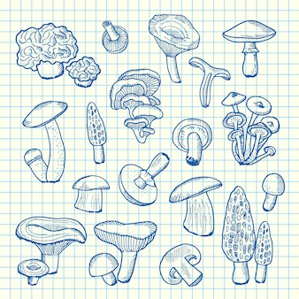 Hand drawn mushrooms on cell sheet