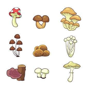 Hand drawn mushrooms collection