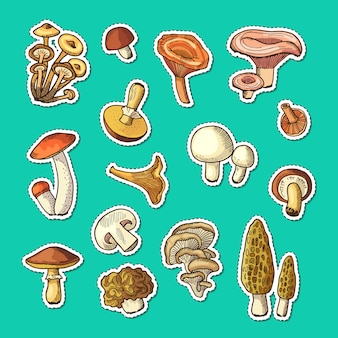 Hand drawn mushrooms stickers set