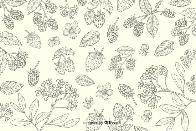 Hand drawn natural food background