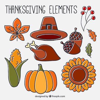 Elementi naturali e tradizionali disegnati a mano di ringraziamento