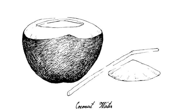 白い背景の上のココナッツ水の描かれた手
