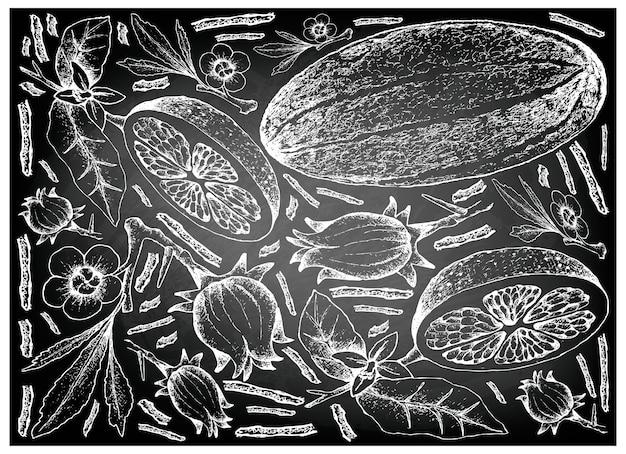 白い背景に新鮮な果物を描いた手