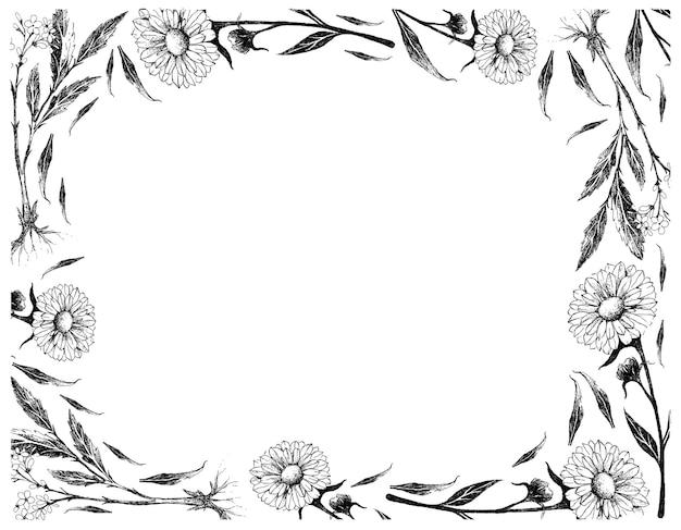 발레리 안과 금송화 또는 금잔화 꽃의 손으로 그린
