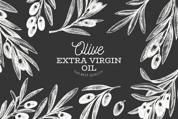 Hand drawn olive branch banner template.