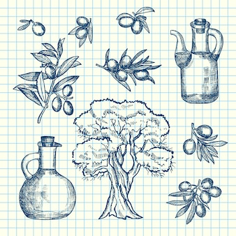 Hand drawn olive branches, bottles and tree on cell sheet. olive branch of tree and bottle oil