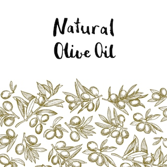 Hand drawn olive branches with place for text