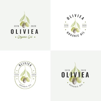 Коллекция рисованной оливковых винтажных значков
