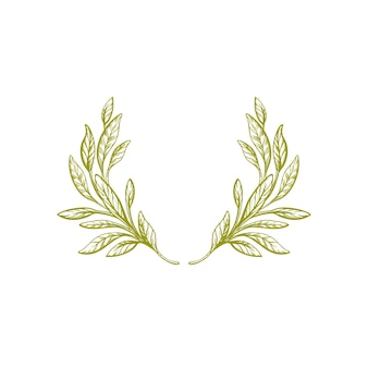 Ручной обращается оливковый венок зеленый лист винтажная ветка изолированная граница