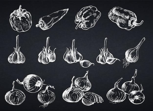 Ручной обращается лук, перец и чеснок. иллюстрация в стиле эскиза для сельскохозяйственной продукции. стиль классной доски.