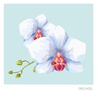 手描きの蘭の花プリント