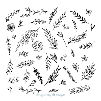 Collezione ornamentale disegnata a mano
