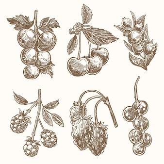 Набор рисованной наброски ягод