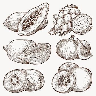 Confezione di frutti di contorno disegnato a mano