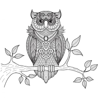 Hand drawn owl background