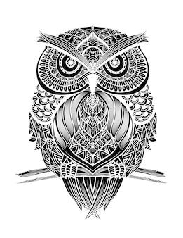 Hand drawn owl background