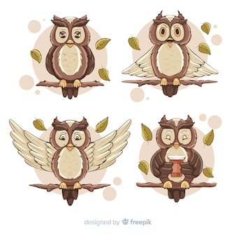 Hand drawn owl collection