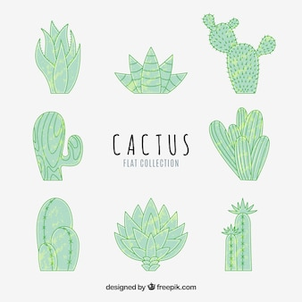 Hand drawn pack of fun cactus
