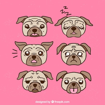 Hand drawn pack of pug faces