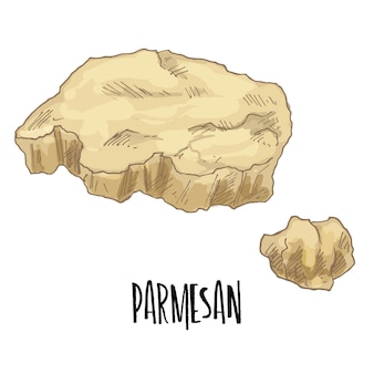 Hand drawn parmesan cheese illustration