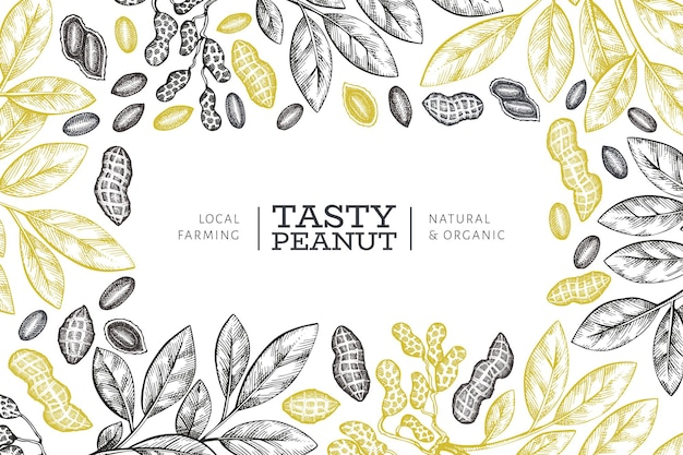 Hand drawn peanut branch and kernels label template.