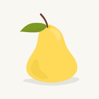 Hand drawn pear fruit illustration