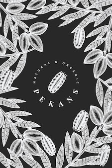 Hand drawn pecan branch and kernels design