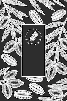 Hand drawn pecan branch and kernels. organic food vector illustration isolated on chalk board. retro nut illustration. engraved style botanical picture.