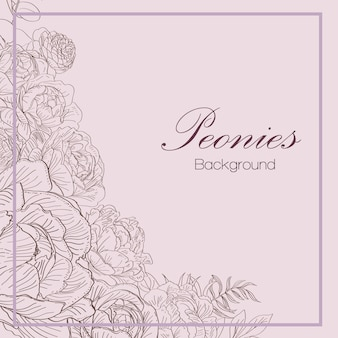 Hand drawn peonies background