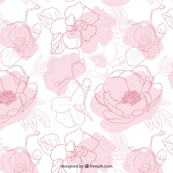 Hand drawn Peonies pattern