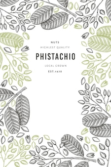 Hand drawn phistachio branch and kernels banner template