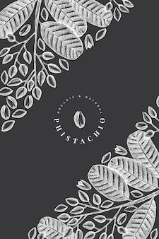 Hand drawn phistachio branch and kernels design template. vintage nut illustration. engraved style botanical.