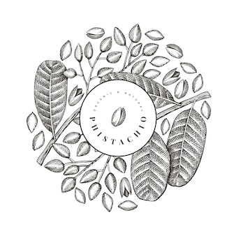 Hand drawn phistachio branch and kernels design template