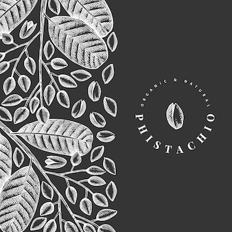Hand drawn phistachio branch and kernels design template.