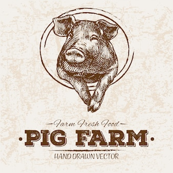 Hand drawn pig farm