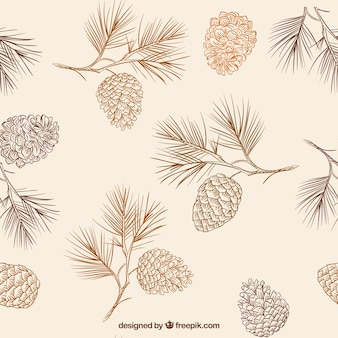 Hand drawn pine cones pattern